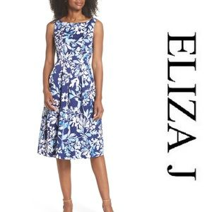 Eliza J Seamed Bodice Fit & Flare Dress